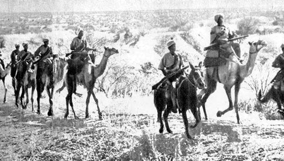 The SDF On Patrol